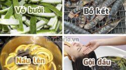 Cách trị rụng tóc sau sinh tại nhà hiệu quả bằng nguyên liệu tự nhiên.
