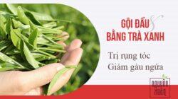 Hướng dẫn gội đầu bằng lá trà xanh để chăm sóc tóc.